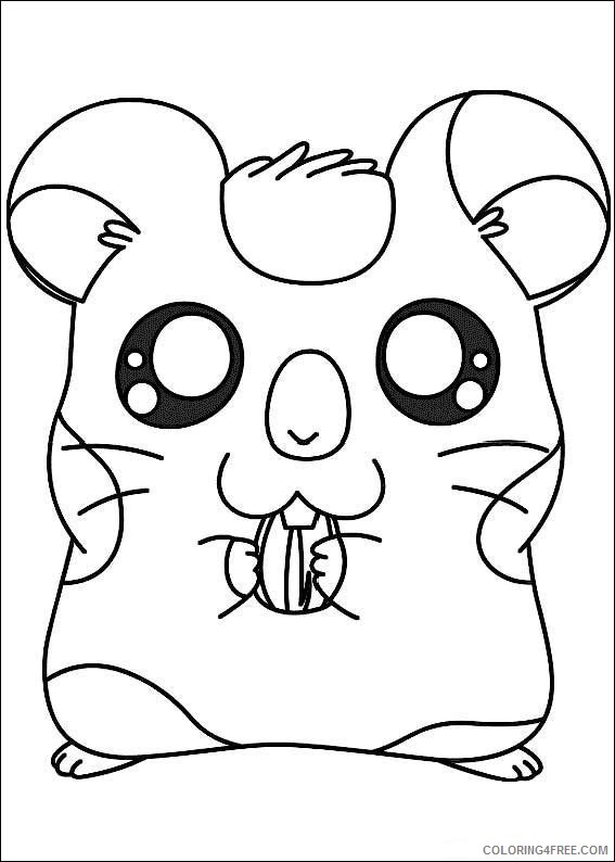 Hamtaro Coloring Pages Printable Coloring4free