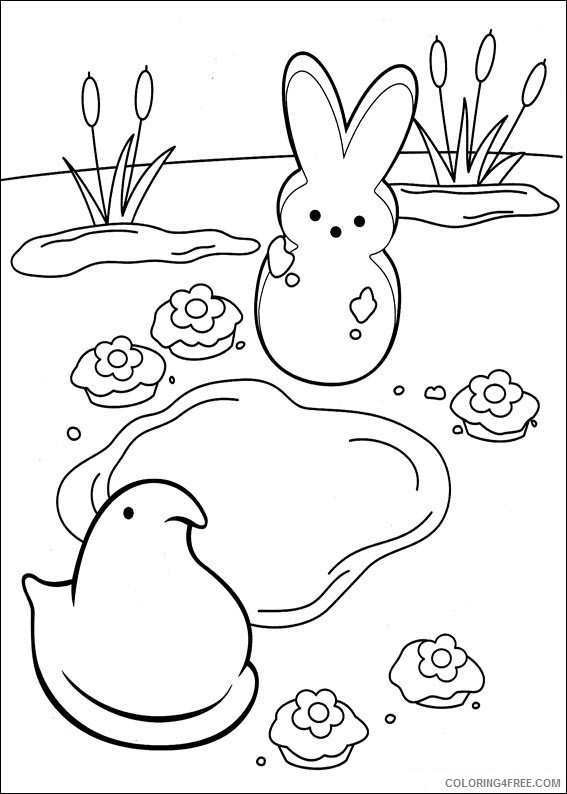 Marshmallow Peeps Coloring Pages Printable Coloring4free