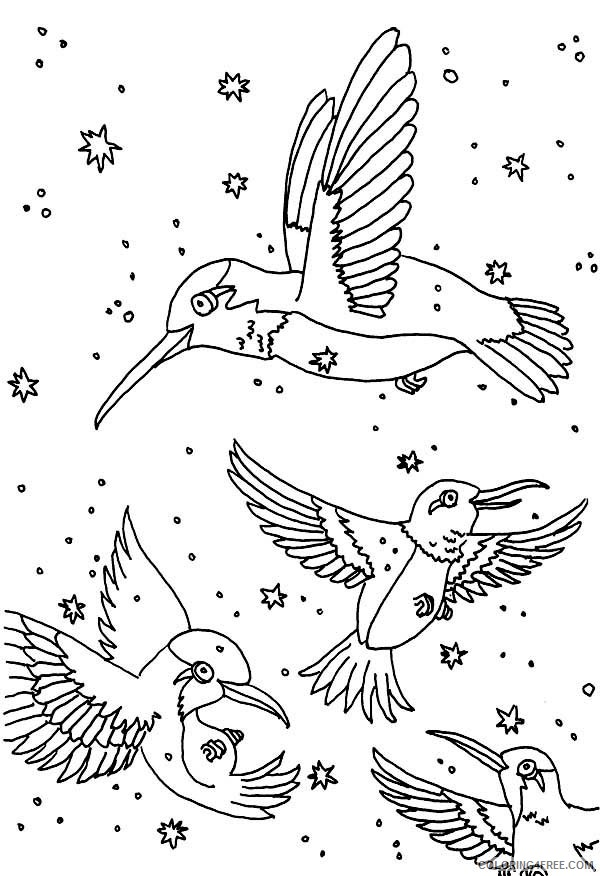 a group of hummingbird coloring pages Coloring4free