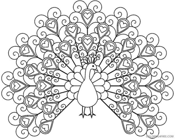 adult coloring pages cute peacock Coloring4free