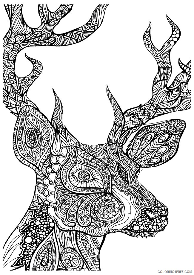 adult coloring pages deer head Coloring4free