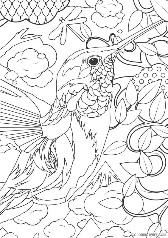 advanced coloring pages hummingbird Coloring4free