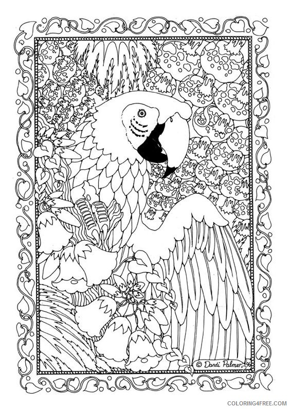 advanced coloring pages of bird Coloring4free