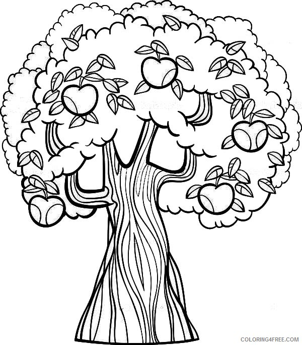 apple tree coloring pages printable Coloring4free