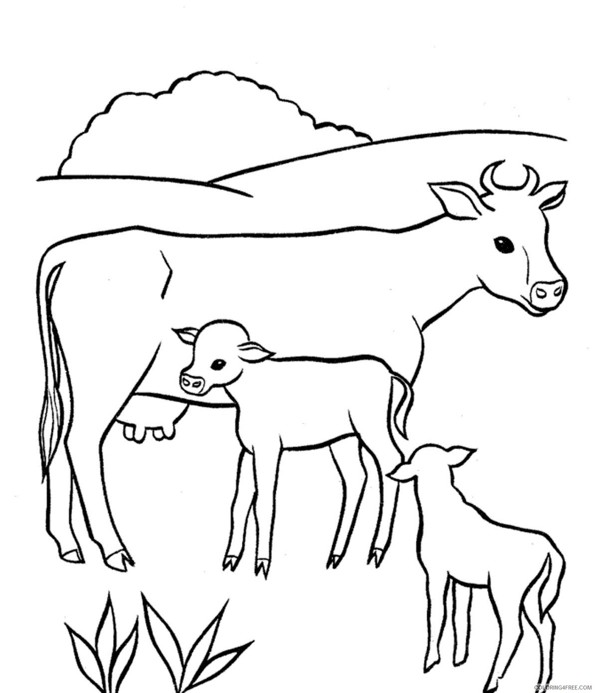 baby cow coloring pages with mom Coloring4free