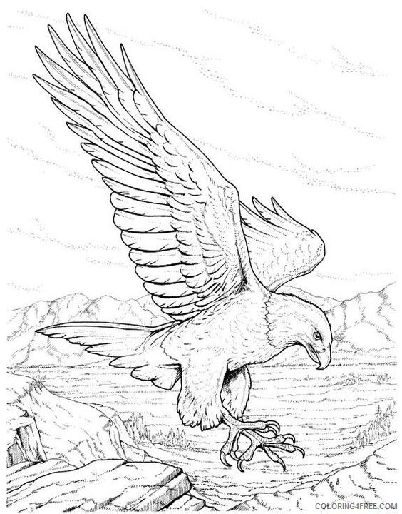 bald eagle coloring pages realistic Coloring4free