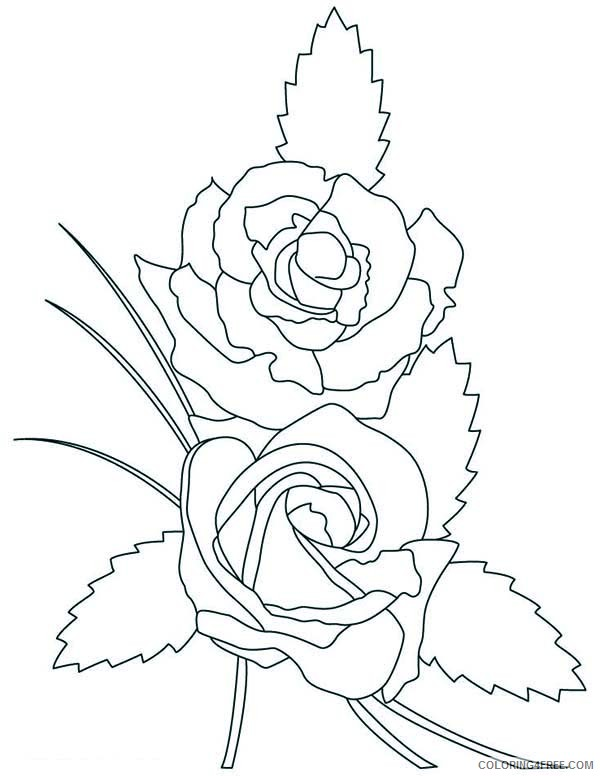beautiful rose coloring pages to print Coloring4free