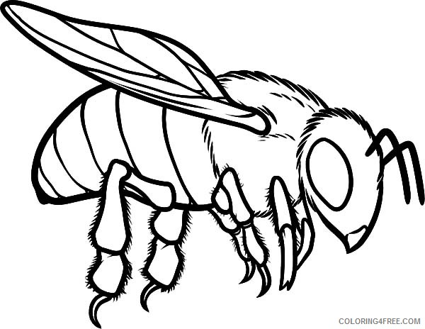 bee coloring pages flying Coloring4free