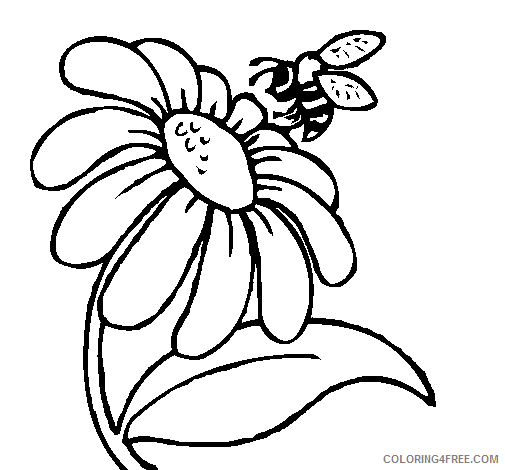 bee coloring pages with flower Coloring4free