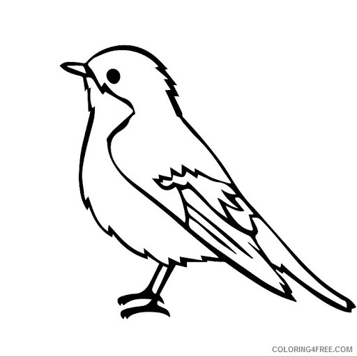 bird coloring pages for kids printable Coloring4free