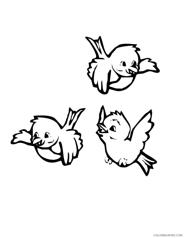 bird coloring pages for preschooler Coloring4free