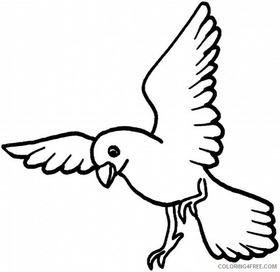 bird coloring pages for toddler Coloring4free