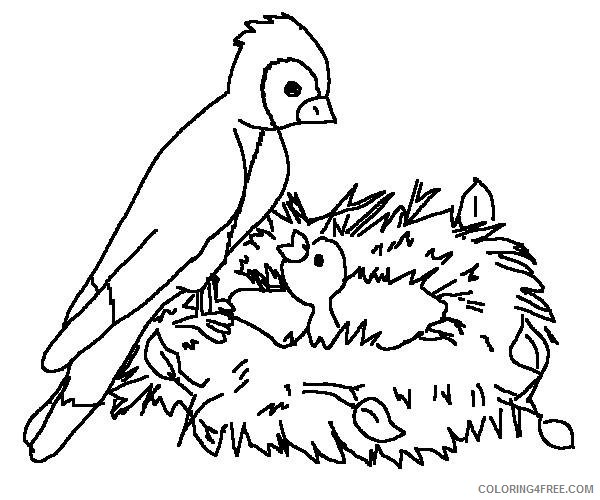 bird nest coloring pages Coloring4free