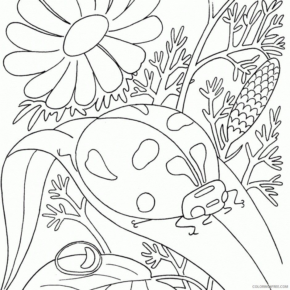 bug coloring pages ladybug and flower Coloring4free