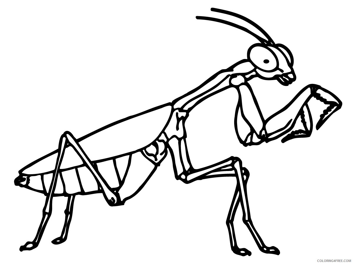 bug coloring pages mantis Coloring4free