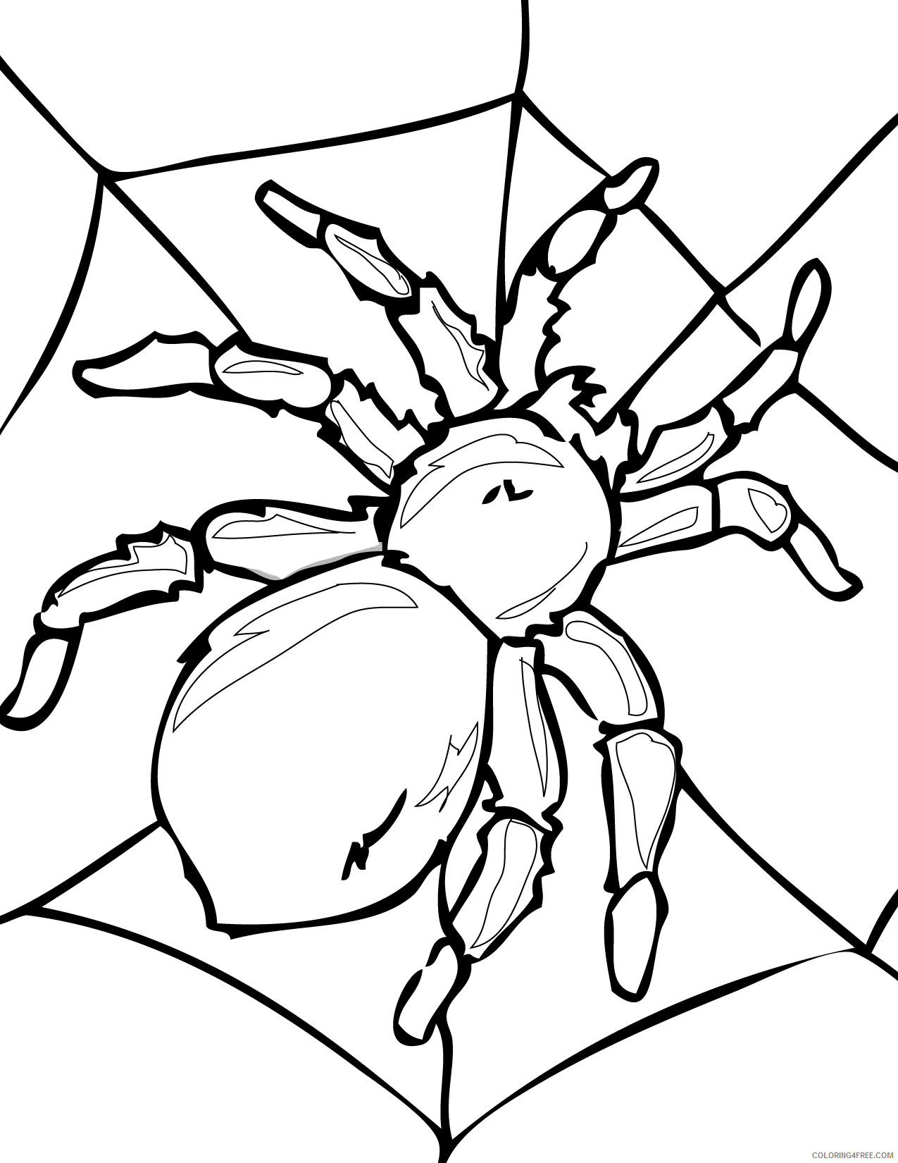 bug coloring pages spider on web Coloring4free