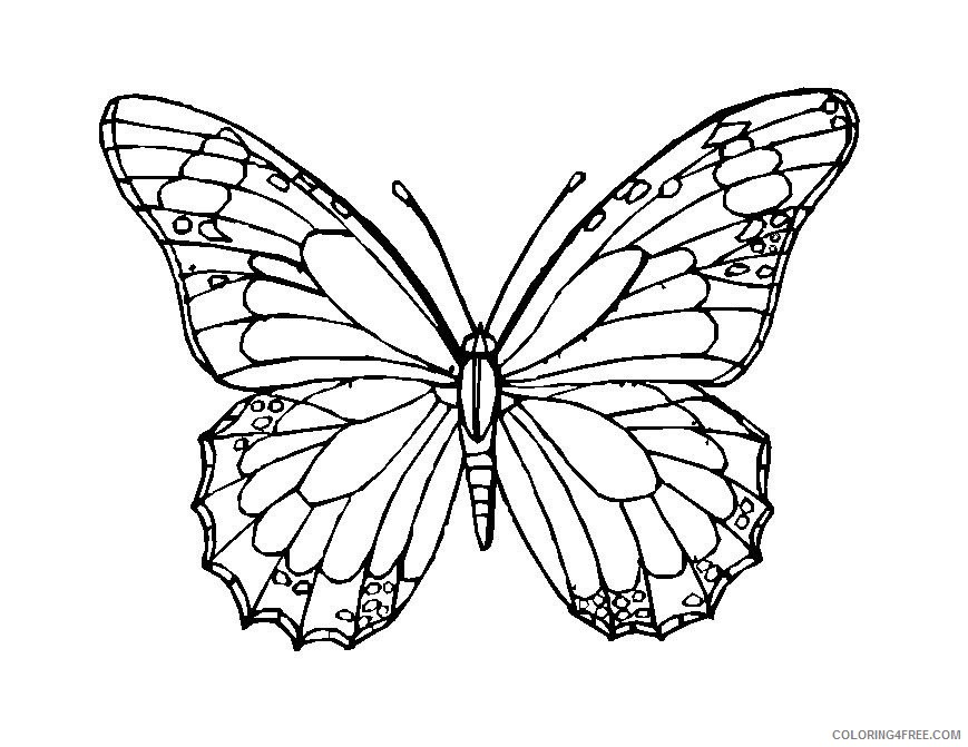 butterfly mosaic coloring pages Coloring4free
