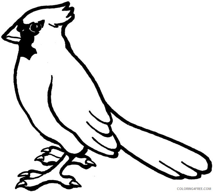 cardinal bird coloring pages Coloring4free