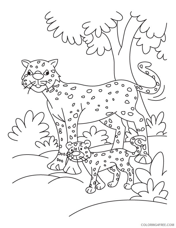 cheetah coloring pages for kindergarten Coloring4free