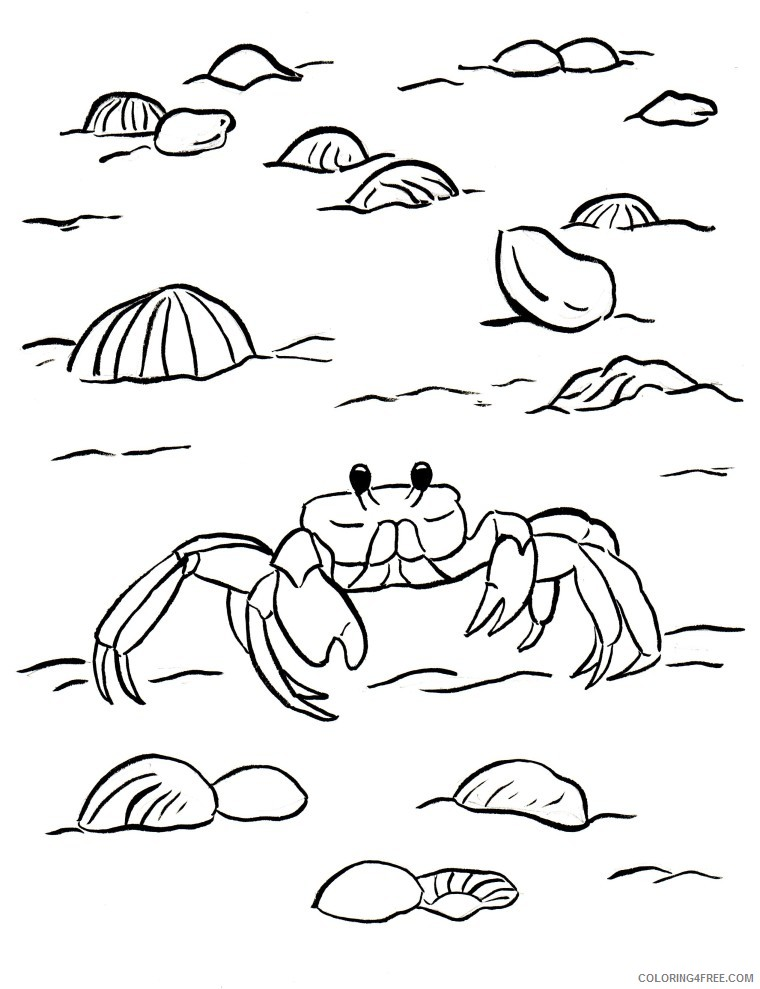 crab coloring pages at the beach Coloring4free