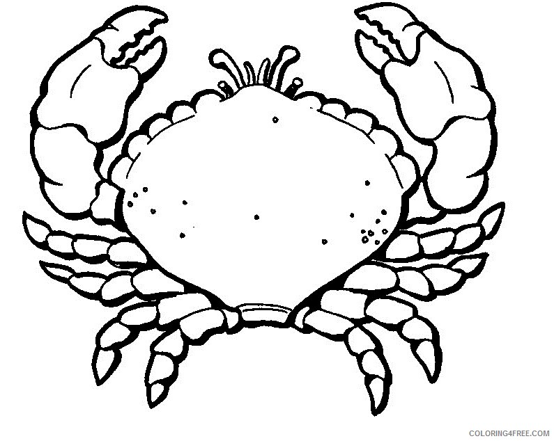 crab coloring pages free to print Coloring4free