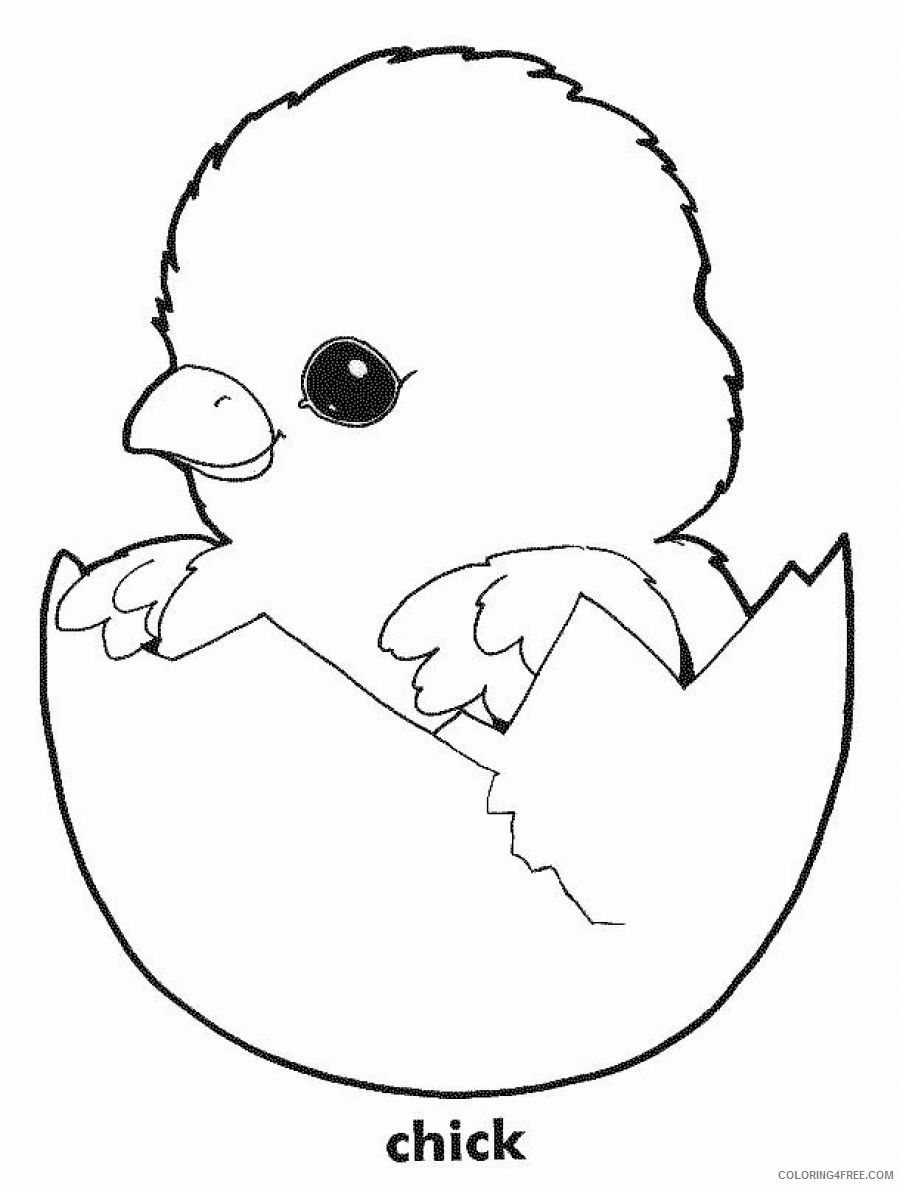 cute chicken coloring pages chick Coloring4free