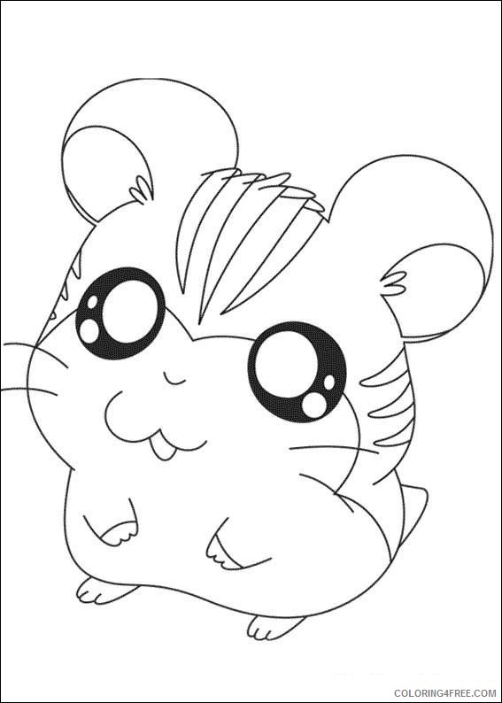 cute hamster coloring pages for kids Coloring4free