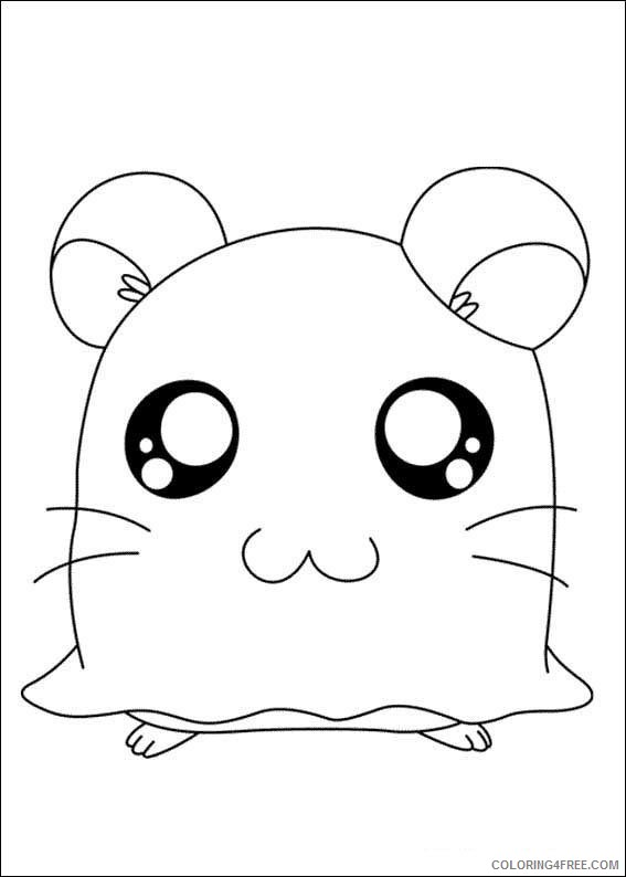 cute hamster coloring pages to print Coloring4free