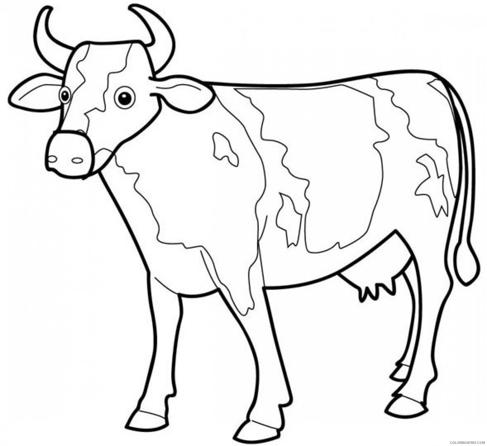 dairy cow coloring pages Coloring4free