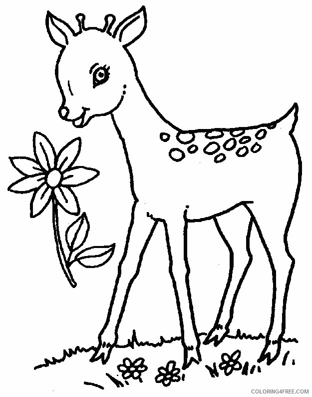 deer coloring pages for girls Coloring4free