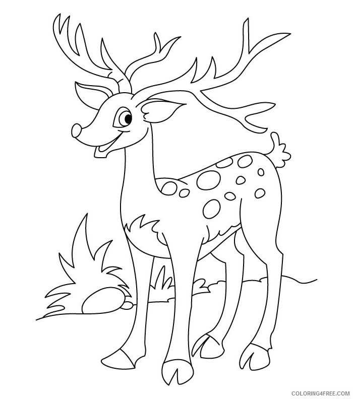 deer coloring pages for kids printable Coloring4free