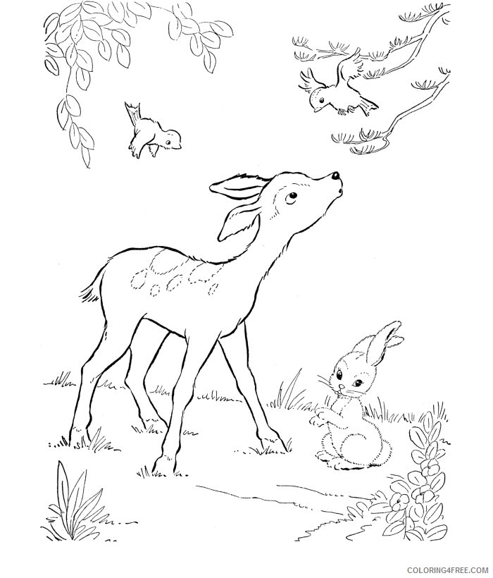 deer coloring pages with birds and bunny Coloring4free