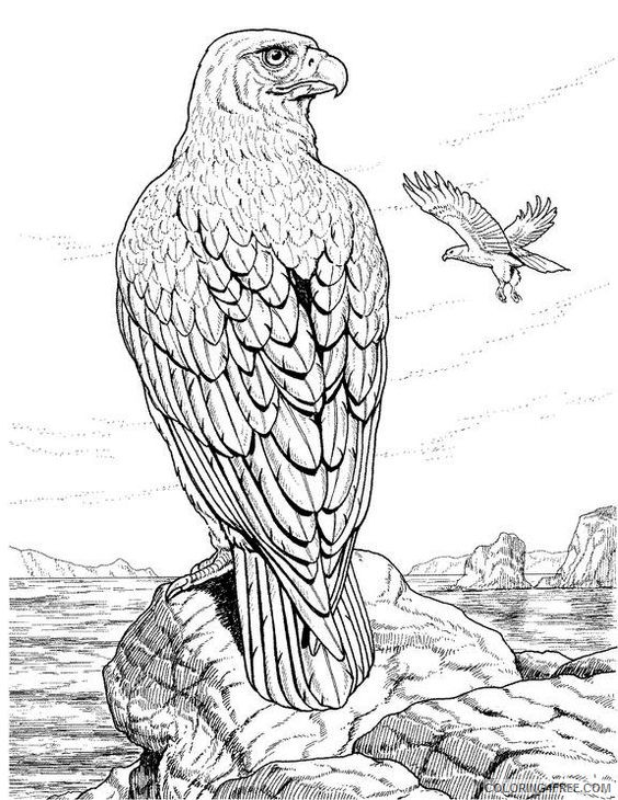 detailed coloring pages of eagle Coloring4free