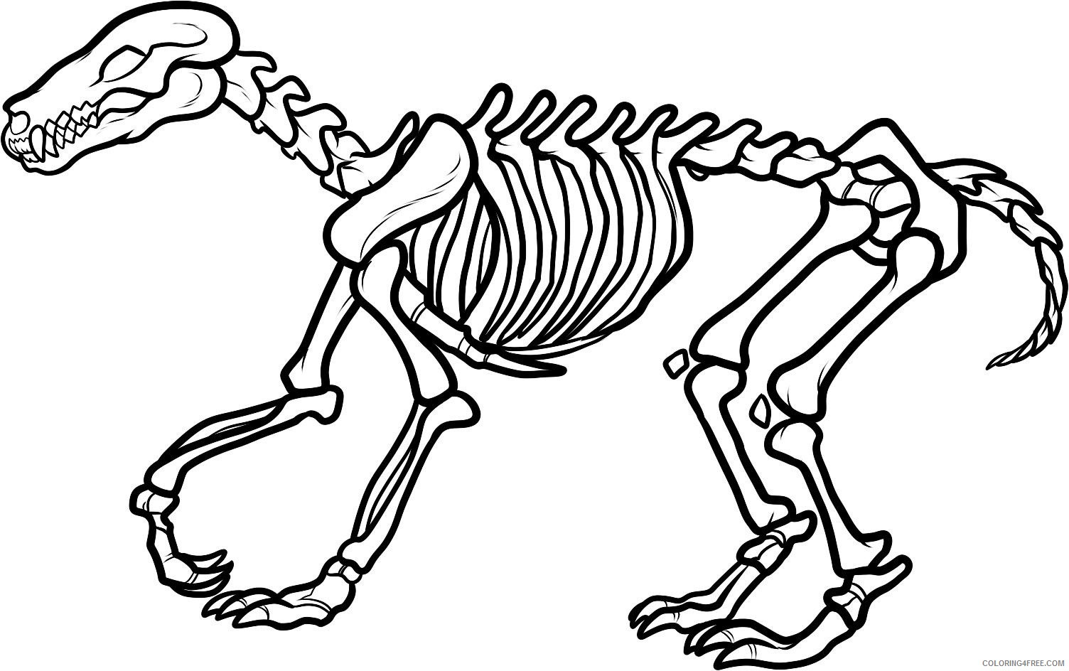 dinosaur skeleton coloring pages Coloring4free