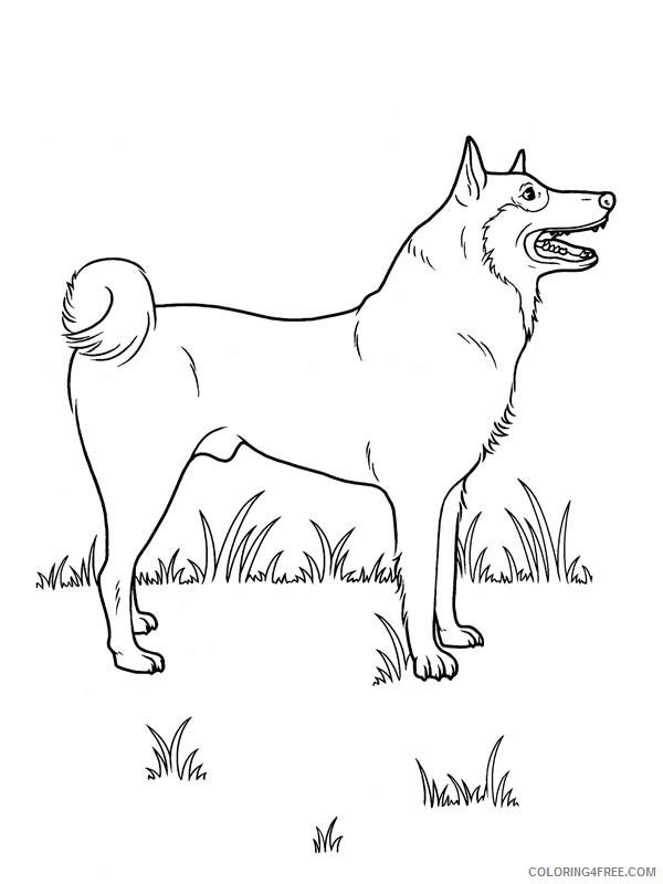 dog coloring pages akita inu Coloring4free