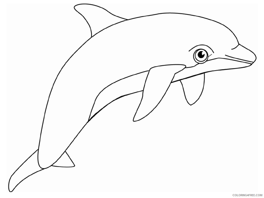 dolphin coloring pages for kids Coloring4free