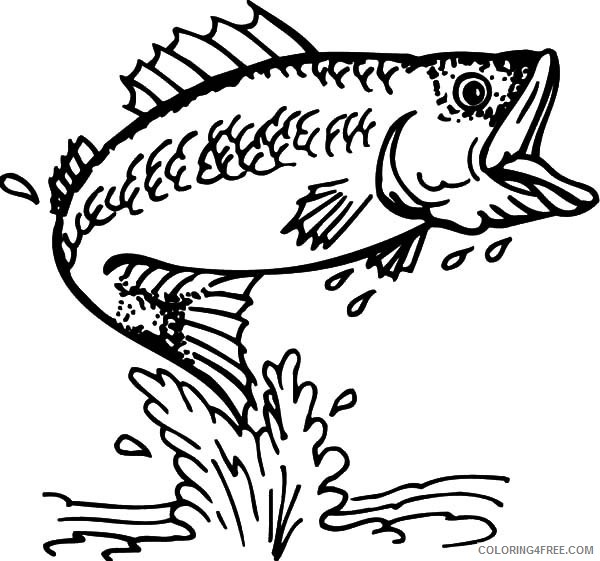 fish coloring pages bass fish Coloring4free