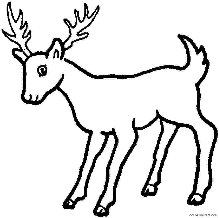 free deer coloring pages for kids Coloring4free