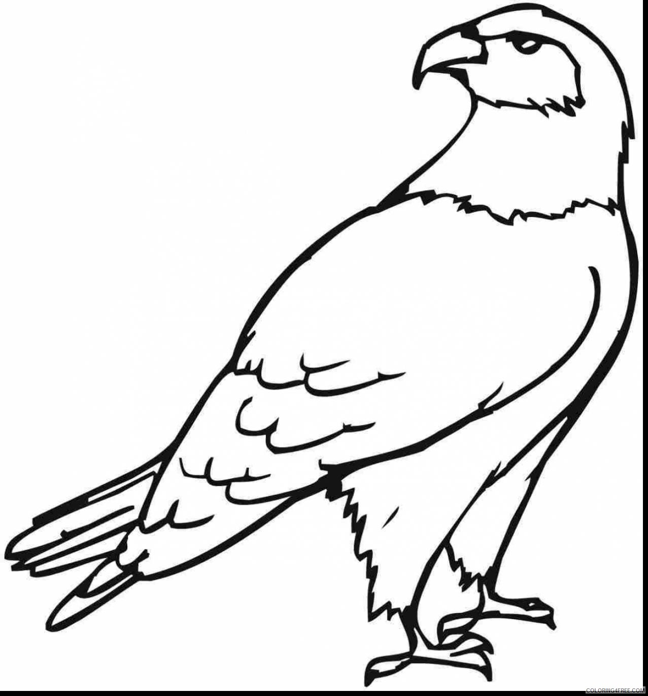free eagle coloring pages for kids Coloring4free