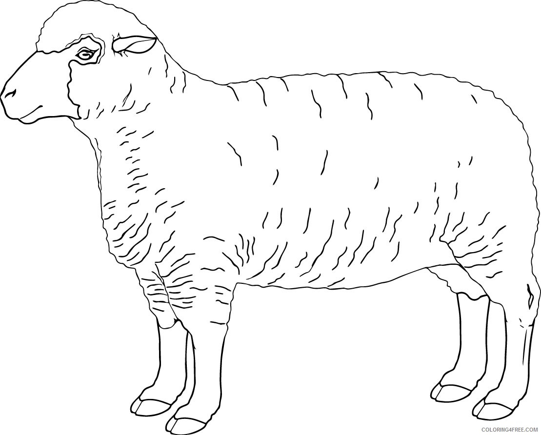 free sheep coloring pages to print Coloring4free