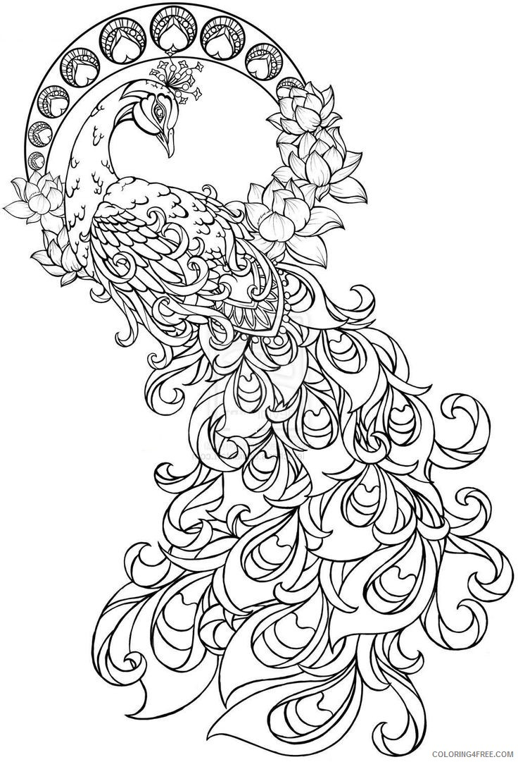 grown up coloring pages peacock Coloring4free