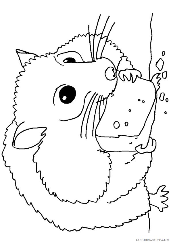 hamster coloring pages eating cheese Coloring4free