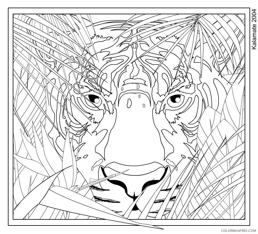 hard tiger coloring pages for boys Coloring4free