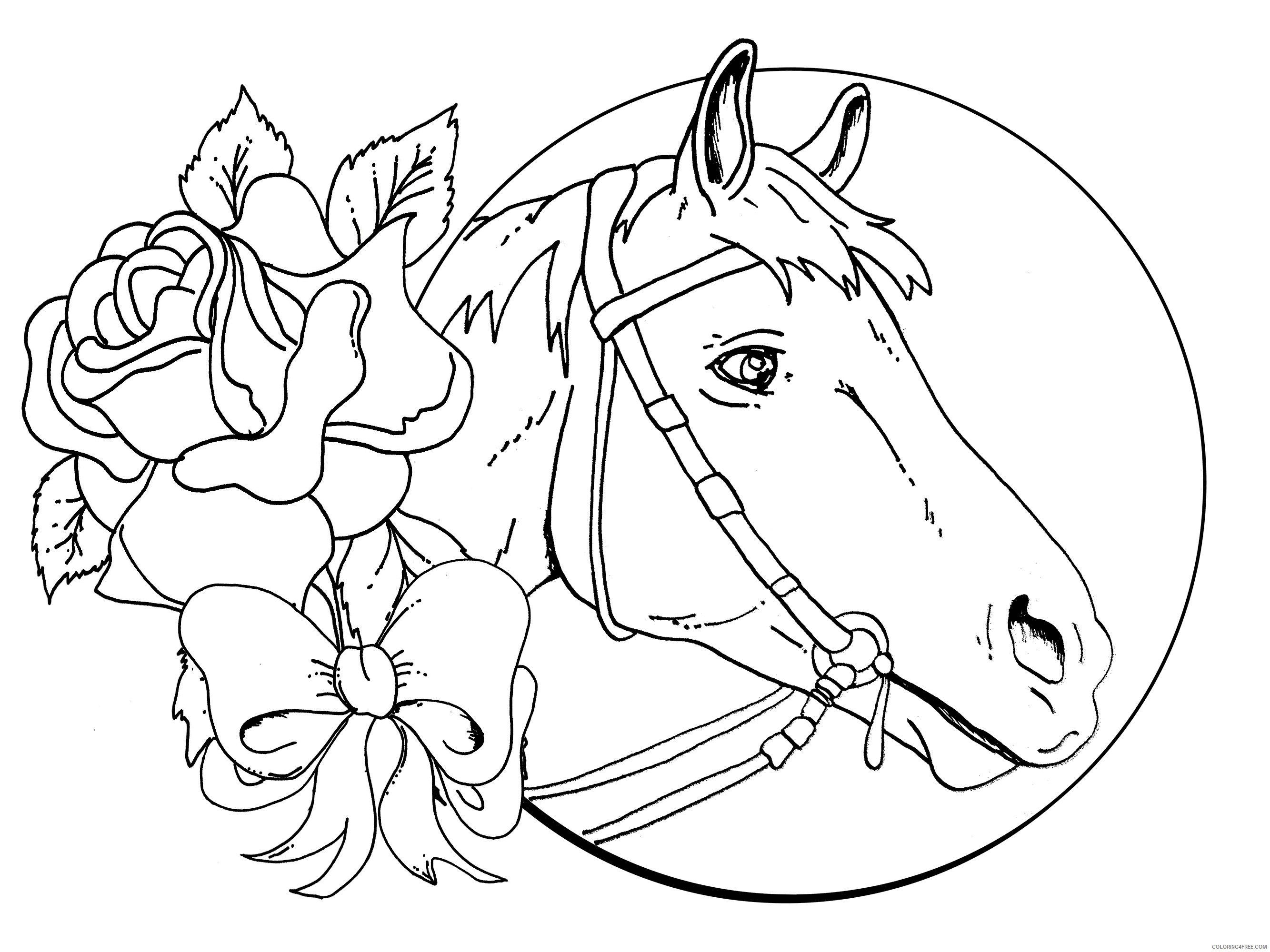 horse coloring pages for girls Coloring4free