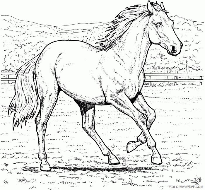 horse coloring pages running Coloring4free