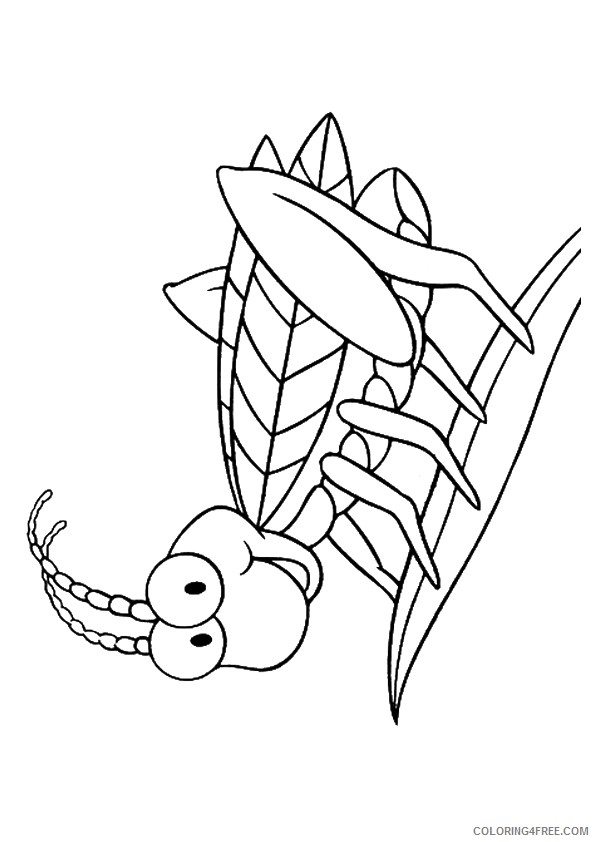 insect coloring pages cute grasshopper Coloring4free