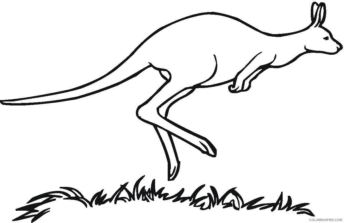 kangaroo coloring pages jumping Coloring4free