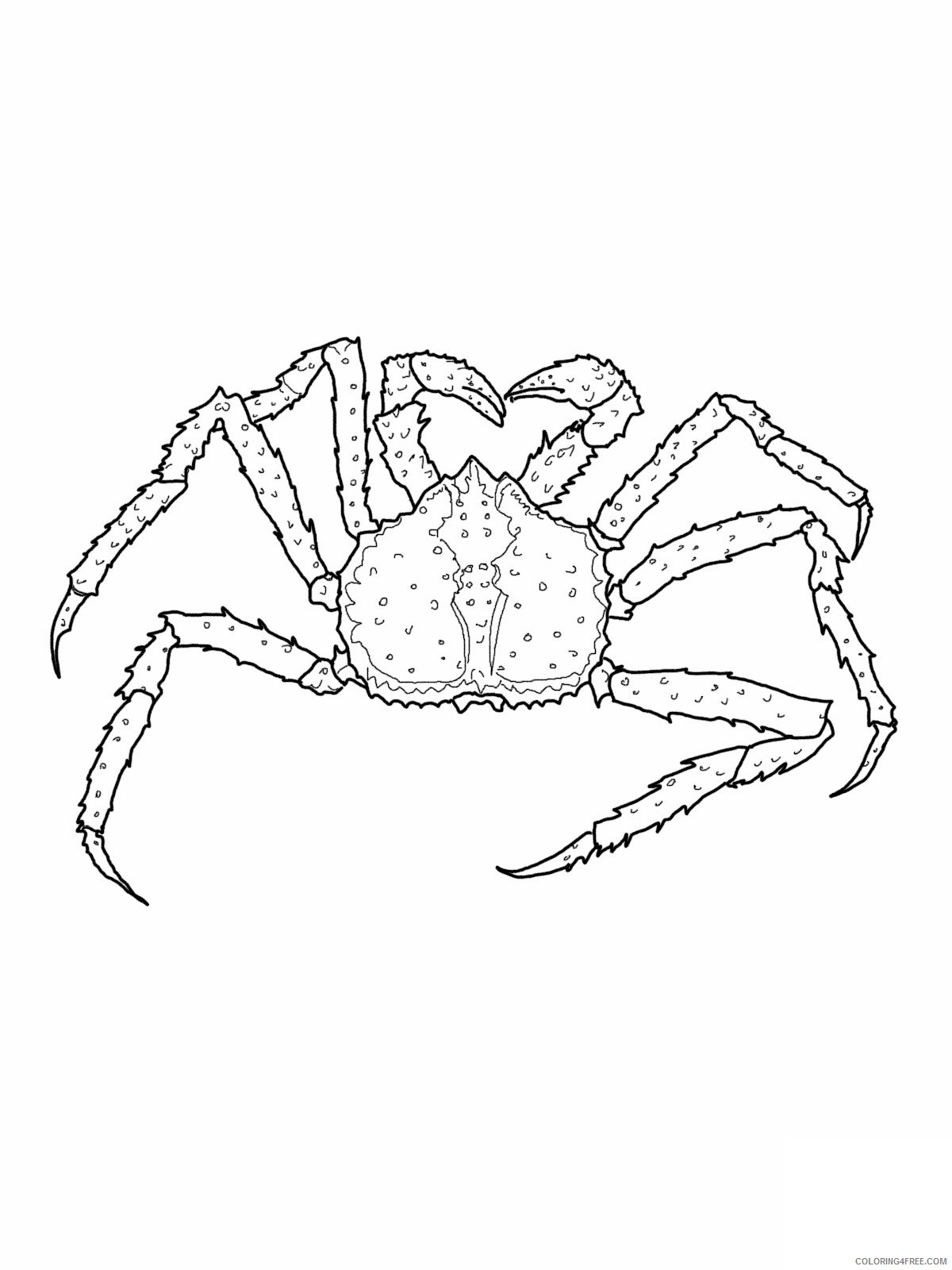 king crab coloring pages printable Coloring4free