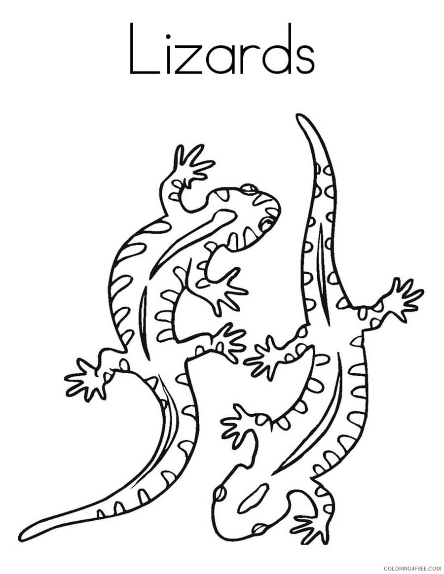 lizard coloring pages two lizards Coloring4free