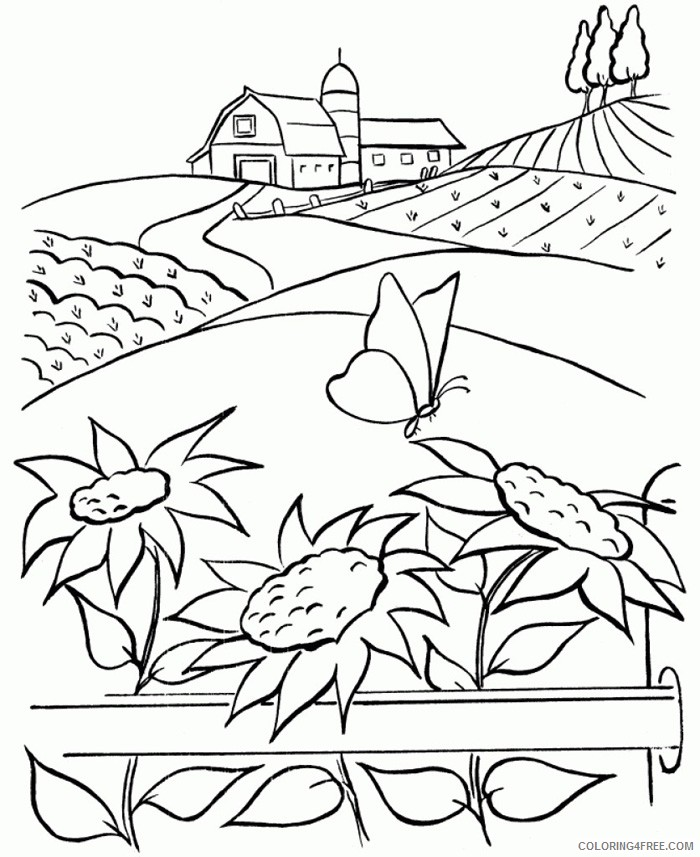 nature coloring pages with sunflowers Coloring4free
